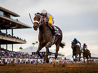DEL MAR, CA - NOVEMBER 03: Forever Unbridled #6, ridden by John Velazquez crosses the line first in the Breeders' Cup Distaff at Del Mar Thoroughbred Club on November 03, 2017 in Del Mar, California. (Photo by Alex Evers/Eclipse Sportswire/Breeders Cup)