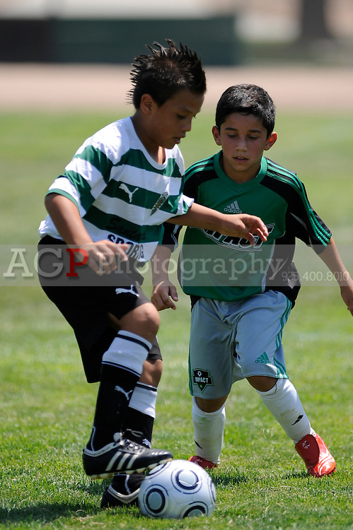 Santa Clara Sporting 98 Vs Impact Gold 98 during the BUSC SUmmer Classic in Pleasanton, California August 15, 2009. (Photo by Alan Greth)