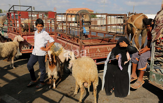 Palestinians gather at a live stock market, ahead of Eid al-Adha in Deir al-Balah, in the center of the Gaza Strip on August 22, 2017. Eid al-Adha (the Festival of Sacrifice) is celebrated throughout the Muslim world as a commemoration of Abraham's willingness to sacrifice his son for God, and cows, camels, goats and sheep are traditionally slaughtered on the holiest day. Photo by Ashraf Amra