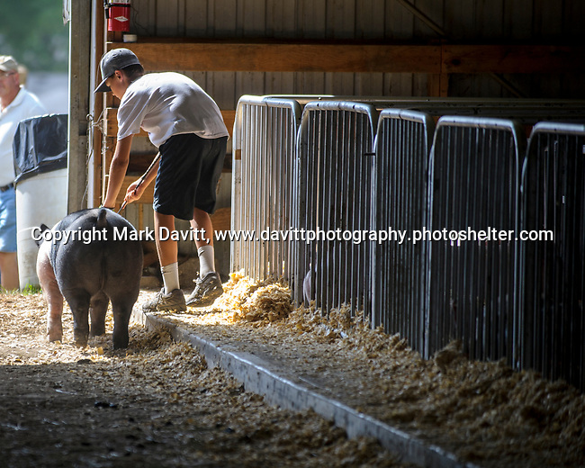 Lane McGraw of the Indianola Shooting Stars gets in a little last minute train before showing his pig the next morning.