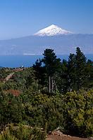 Spanien, Kanarische Inseln, Gomera, Naturpark Garjonay, Blick auf Teide auf Teneriffa