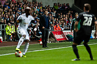 Thursday  03 October  2013  Pictured: Michael Laudrup, Manager of Swansea City looks on<br /> Re:UEFA Europa League, Swansea City FC vs FC St.Gallen,  at the Liberty Staduim Swansea