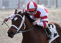 3/17/2012  -  Jockey Ramon Dominguez pilots 2011 horse of the year Havre De Grace to victory in the $150,000 New Orleans Ladies at Fair Grounds.  Hodges Photography / Lynn Roberts