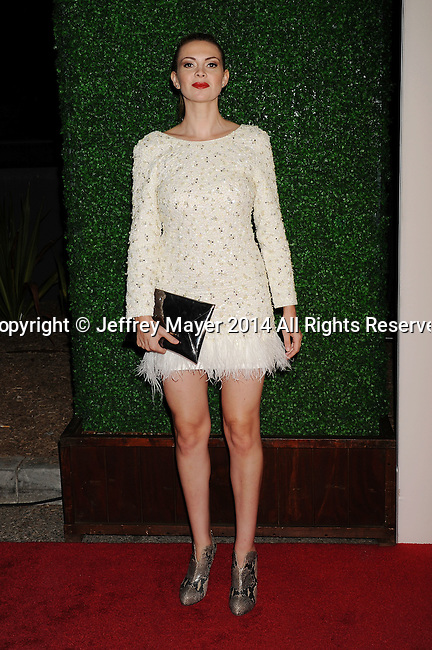 LOS ANGELES, CA- OCTOBER 01: Actress Carly Steel attends The Academy of Motion Picture Arts and Sciences' Hollywood Costume Opening Party at the Wilshire May Company Building on October 1, 2014 in Los Angeles, California.