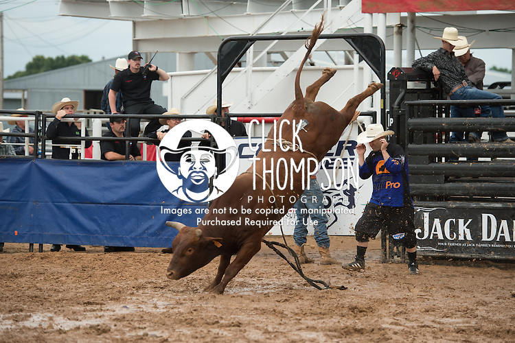 Ouncie Mitchell attempts A19 Bezerk of Rockin R Bucking Bulls during the American Bucking Bull, Incorporated event in Decatur, TX - 6.3.2016. Photo by Christopher Thompson