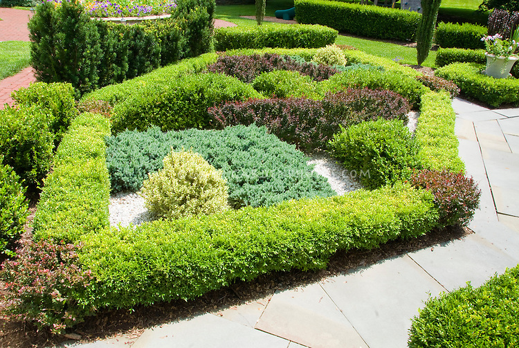 Maze Gardens Knot Patterns Stock Photo Image Pictures Images