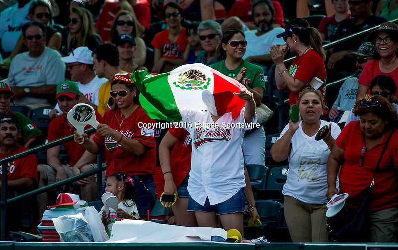 Aberdeen, MD - JULY 31: Fans cheer on Team Mexico during the game between the Republic of Korea and Mexico during the Cal Ripken World Series at The Ripken Experience Powered by Under Armour on July 31, 2016 in Aberdeen, Maryland. (Photo by Ripken Baseball/Eclipse Sportswire/Getty Images)