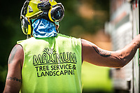 06-08-18 Full Gallery Maximum Tree Service Minneapolis Commercial Photography