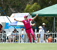 24th November 2019; Lilac Hill Park, Perth, Western Australia, Australia; Womens Big Bash League Cricket, Perth Scorchers versus Sydney Sixers; Hollie Ermitage of the Sydney Sixers celebrates catching out Meg Lanning of the Perth Scorchers - Editorial Use