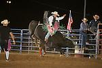 SEBRA - Doswell, VA - 6.30.2014 - Bulls & Action