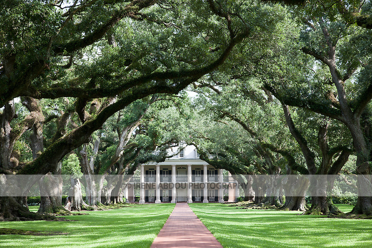 "Between New Orleans and Baton Rouge, and on the Mississipi River, lies Oak Alley Plantation, also known as the ""Grande Dame of the Great River Road"".  Nearly 300 years old, live oak trees form a 1/4-mile canopy leading up to the classic Greek-revival style antebellum house."