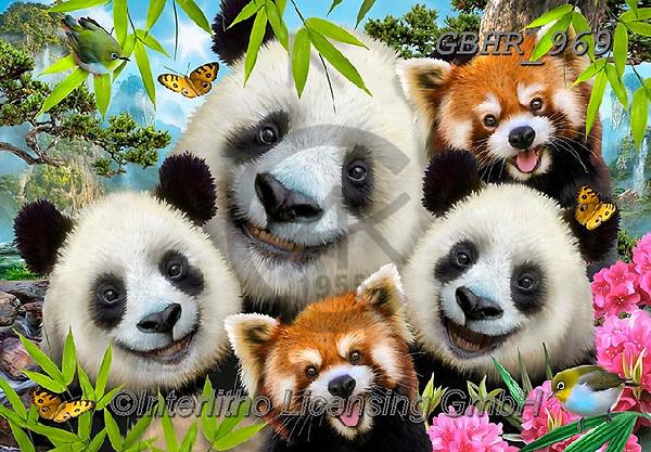 Howard, SELFIES, paintings+++++,GBHR969,#selfies#, EVERYDAY ,panda,pandas ,puzzle,puzzles