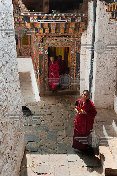 Monks at the Tango Dzong Monastery.