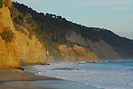 Waddell Cliffs from Ano Nuevo State Park