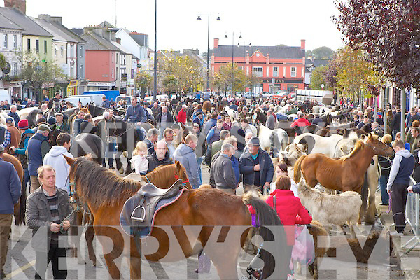 The huge crowd at the annual Castleisland Horse fair on Friday