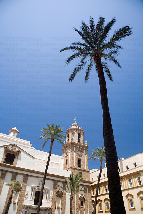 Postcard image of San Francisco church with tall palm trees, Cadiz, Spain