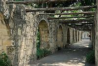 Alamo Arches