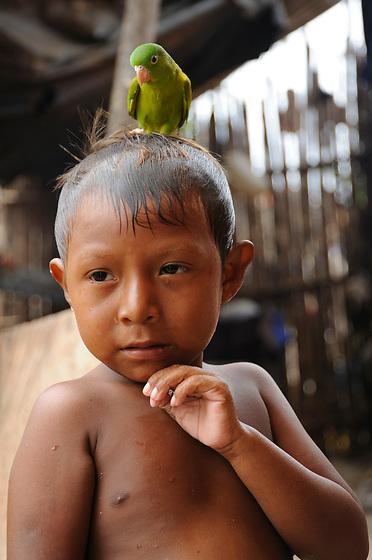 Indígenas guna / niño indígena / comarca de Guna Yala, Panamá.<br /> <br /> Guna indians / indian boy / Guna Yala region, Panama.