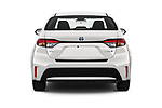 Straight rear view of 2020 Toyota Corolla-Hybrid LE 4 Door Sedan Rear View  stock images