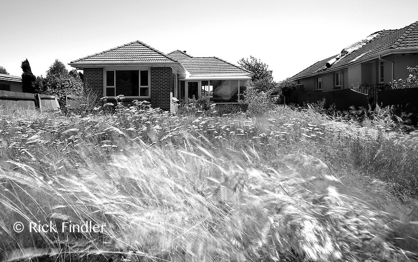Houses stand abandoned in the district of Dallington as they are deemed unfit for living in, 11 months after the 6.3 Christchurch earthuake which claimed 185 lives.