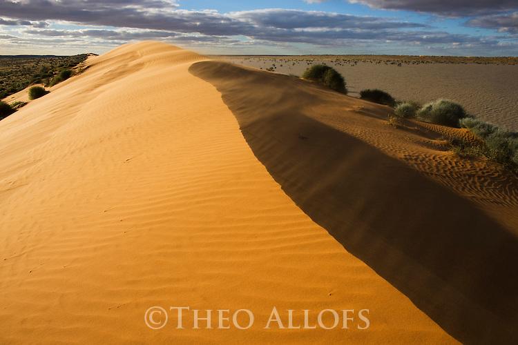 Australia, Queensland, Simpson Desert; red sand dune next to flooded desert pan