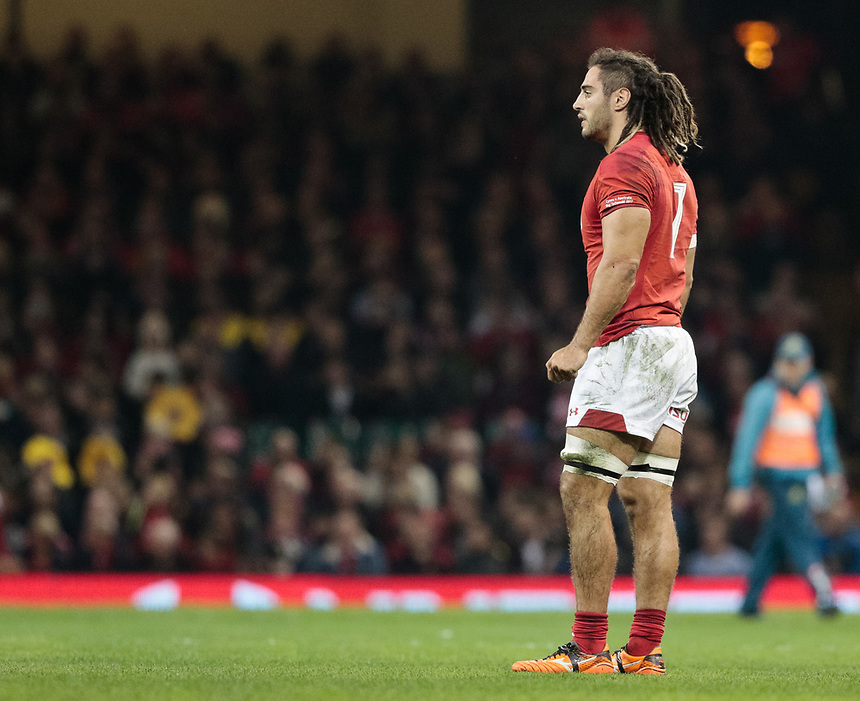 Wales' Josh Navidi<br /> <br /> Photographer Simon King/CameraSport<br /> <br /> International Rugby Union - 2017 Under Armour Series Autumn Internationals - Wales v Australia - Saturday 11th November 2017 - Principality Stadium - Cardiff<br /> <br /> World Copyright &copy; 2017 CameraSport. All rights reserved. 43 Linden Ave. Countesthorpe. Leicester. England. LE8 5PG - Tel: +44 (0) 116 277 4147 - admin@camerasport.com - www.camerasport.com