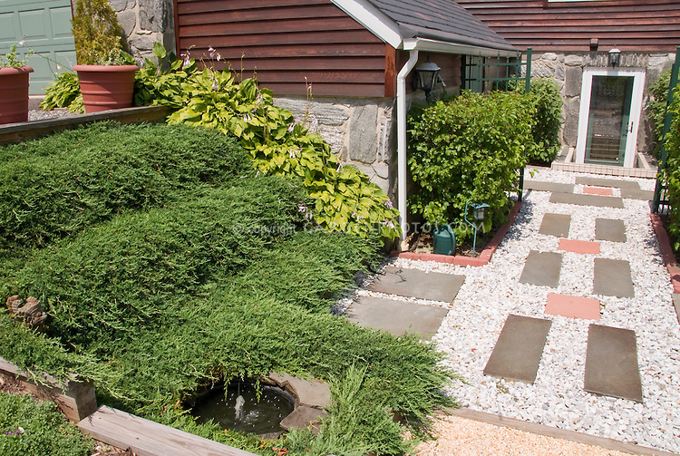 Curb appeal with plants and walkway plant flower stock for Juniper house garden design