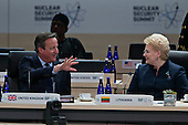David Cameron, U.K. prime minister, left, talks to Dalia Grybauskaite, Lithuania's president, during a closing session at the Nuclear Security Summit in Washington, D.C., U.S., on Friday, April 1, 2016. After a spate of terrorist attacks from Europe to Africa, U.S. President Barack Obama is rallying international support during the summit for an effort to keep Islamic State and similar groups from obtaining nuclear material and other weapons of mass destruction. <br /> Credit: Andrew Harrer / Pool via CNP