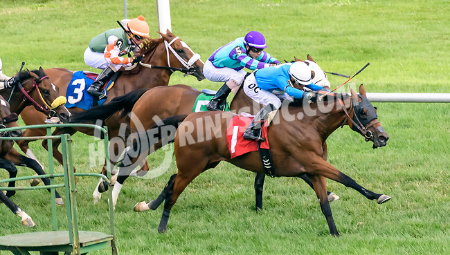 Disqualified winning at Delaware Park on 6/21/17