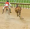 The one that got away, Joyfull Warrior escaping Lance  at Delaware Park on 5/31/12