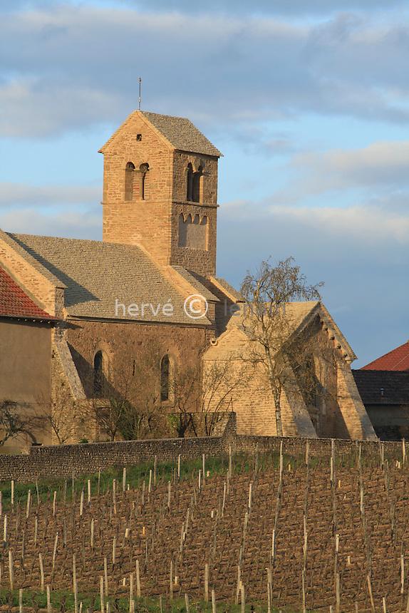 France, Saône-et-Loire (71), Igé, chapelle de Domange et vigne en avril // France, Saône-et-Loire, Igé, Chapel of Domange and vineyard in April