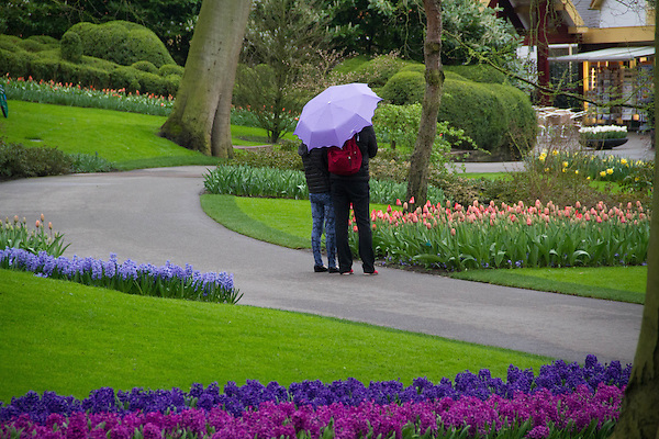 Visitors at Keukenhof Gardens, Lisse, Netherlands. .  John offers private photo tours in Denver, Boulder and throughout Colorado, USA.  Year-round. .  John offers private photo tours in Denver, Boulder and throughout Colorado. Year-round.