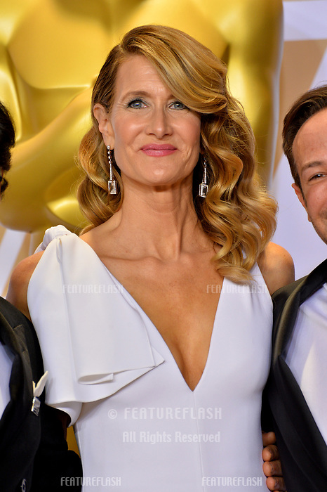 Laura Dern at the 90th Academy Awards Awards at the Dolby Theartre, Hollywood, USA 04 March 2018<br /> Picture: Paul Smith/Featureflash/SilverHub 0208 004 5359 sales@silverhubmedia.com