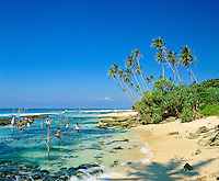 Sri Lanka, South coast near Midigama: stilt fishermen | Sri Lanka, Suedkueste bei Midigama: Stelzenfischer