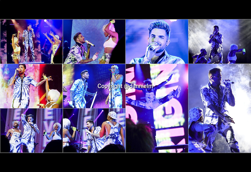 Adam Lambert Italian Photo book from 4 Midwest shows. St. Louis and Kansas City in December of 2015 and TOH Tour Denver and Wichita