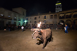 "The bull is seen after the reveler set a on fire during the festivity called toro de jubilo in Medinaceli, near Soria, on november 14, 2015. ""El toro de jubilo"" is a festival that takes place in Medinaceli. Every year, on the second weekend of November,  the bull is surrounded and restrained by participants. During this festival, a bull is tied to a post. Balls are then placed on each horn of the bull and lit a flame. A think layer of mud on the back and face of the bull helps protect the bull from physical injury or burns. The bull is then released by the square, which has 5 fire lit bonfires symbolizing five martyrs.   © PEDRO ARMESTRE"