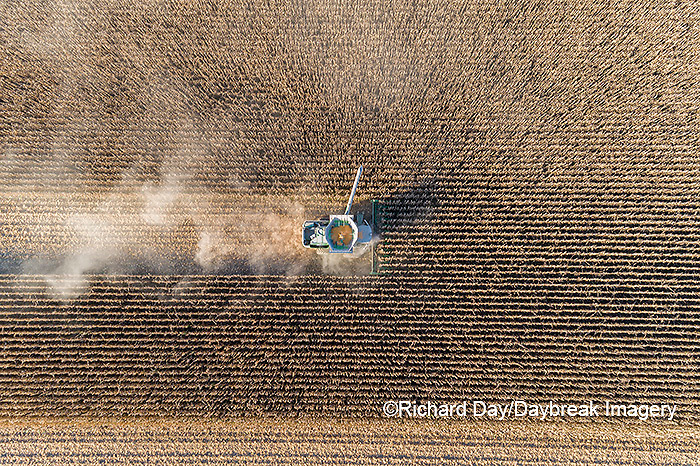 63801-13020 Harvesting corn in fall-aerial  Marion Co. IL