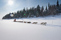 Mitch Seavey on the Yukon River near the Eagle Island checkpoint during Iditarod 2009