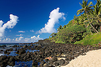 A woman sunbathes with lava rocks and coconut trees on a sandy beach under a blue sky with white clouds, Princeville, Kaua'i.