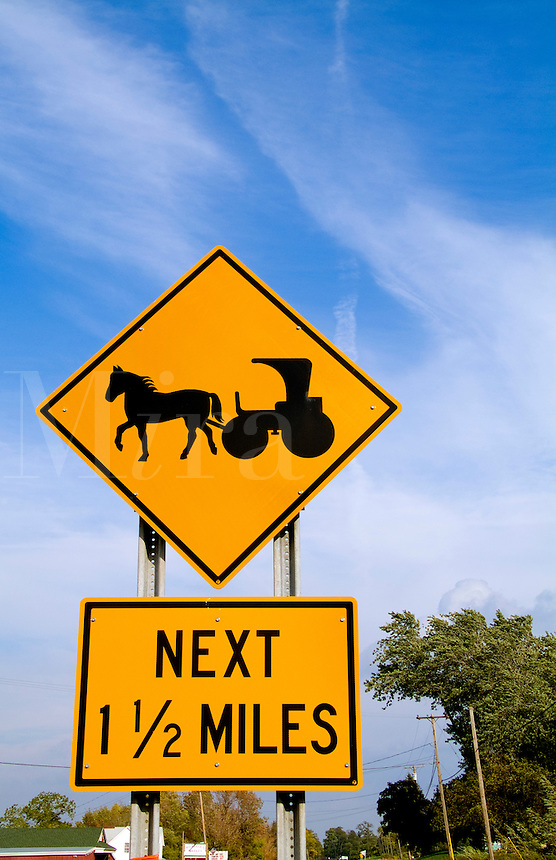 Horse and buggy sign on road in Upstate New York near Rochester