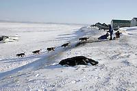 Monday March 12, 2007   ----   John Baker leaves the Shaktoolik checkpoint on Monday afternoon.
