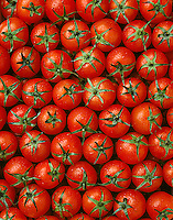 Agriculture - Produce, Cherry Tomatoes.