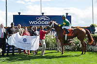 Spring Venture, with jockey P. Husband visits the winners circle after a winning finish at Woodbine Race Course in Ontario, Canada on September 15, 2012.