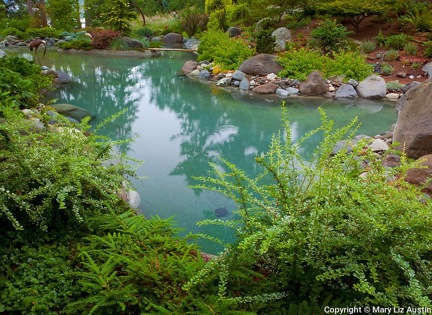 Vashon-Maury Island, WA<br /> Salt water plunge pool surrounded by woodland perennial garden.