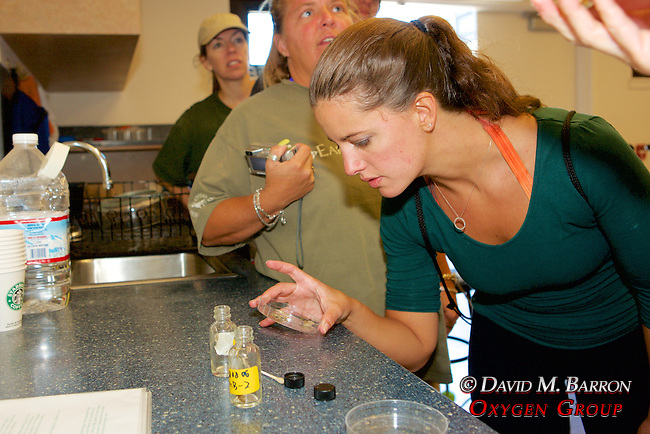 Melissa & Corie In Lab Looking At Sea Otter Scat