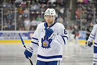 HERSHEY, PA - MARCH 15: Toronto Marlies defenseman Rasmus Sandin (8) waits for a face-off during the Toronto Marlies vs. the Hershey Bears AHL hockey game March 15, 2019 at the Giant Center in Hershey, PA. (Photo by Randy Litzinger/Icon Sportswire)
