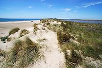 Sand dunes separation between sea and pond, Piemanson beach,Camargue, France