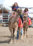 Teri Vance races against Taylor Pettaway during the 56th annual International Camel &amp; Ostrich Races in Virginia City, Nev. on Friday, Sept. 11, 2015. <br /> Photo by Cathleen Allison/Nevada Photo Source