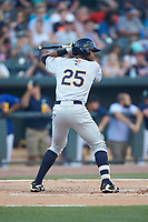 Isiah Gilliam (25) of the Charleston RiverDogs at bat against the Columbia Fireflies at Spirit Communications Park on June 9, 2017 in Columbia, South Carolina.  The Fireflies defeated the RiverDogs 3-1.  (Brian Westerholt/Four Seam Images)