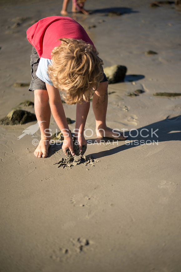 Young boy digging in the sand at the beach, Dunedin, New Zealand - stock photo, canvas, fine art print